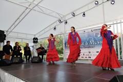 Российско-испанское сотрудничество, vigiljournal