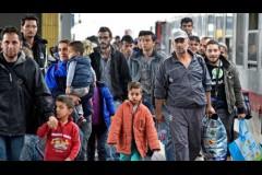 Пути миграции