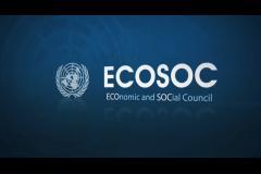 ECOSOC, vigiljournal.com