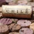 Розовое вино Чили