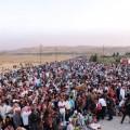 Беженцы в Европе, vigiljournal.com