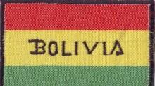 Выборы в Боливии, vigiljournal.com